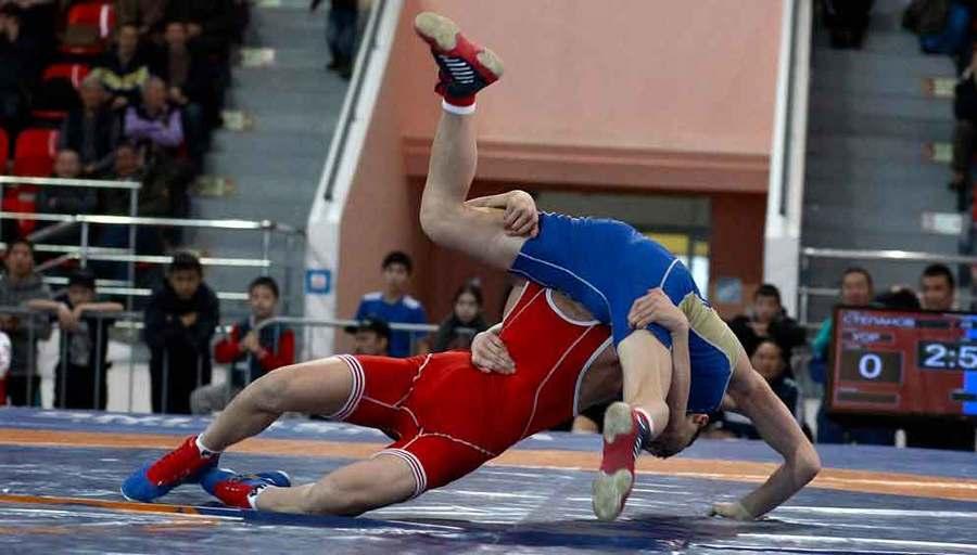 Международный турнир по вольной борьбе в честь Павла Пинигина.