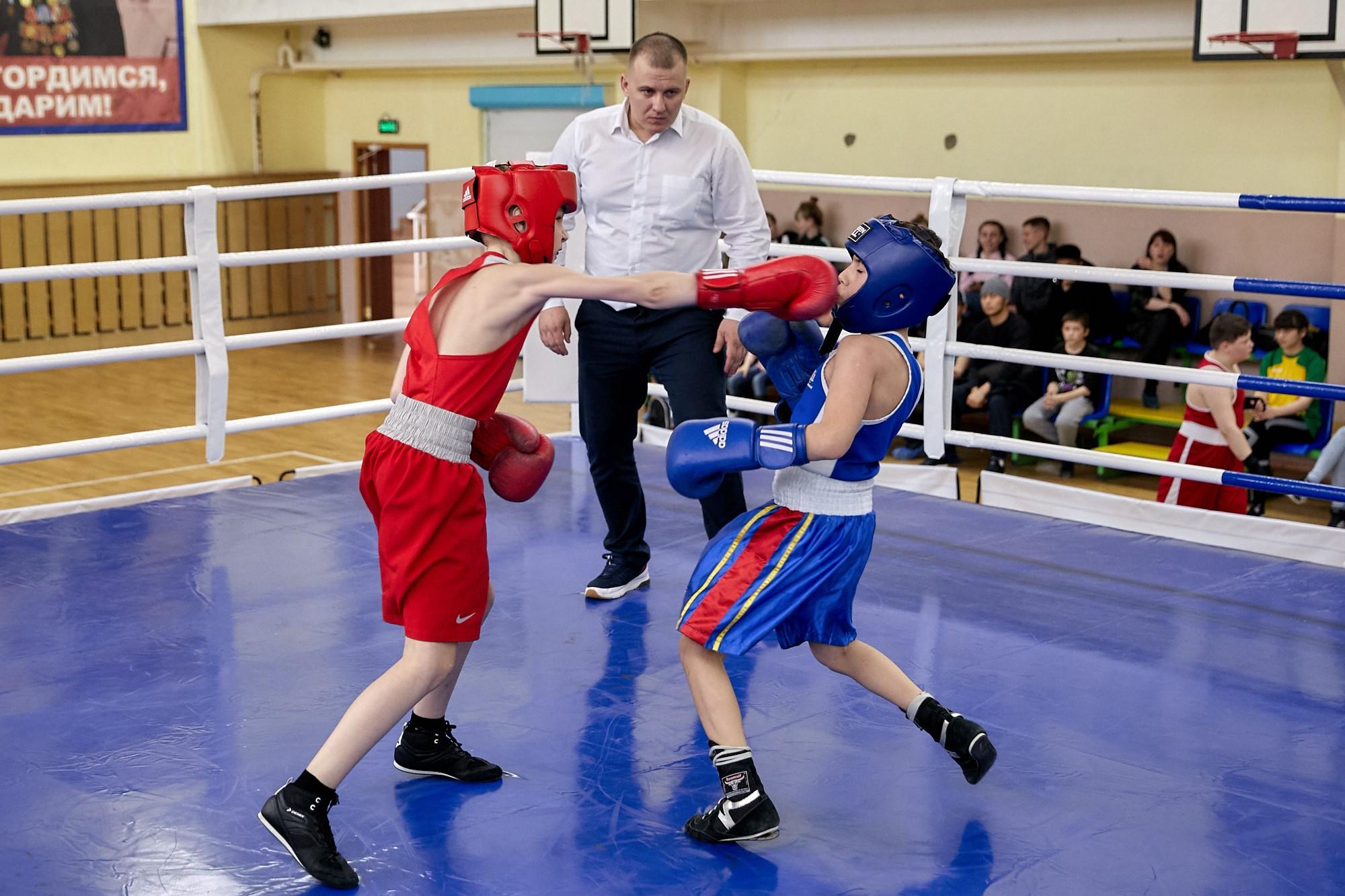 Открытый турнир по боксу памяти чемпиона мира Михаила Поршнева