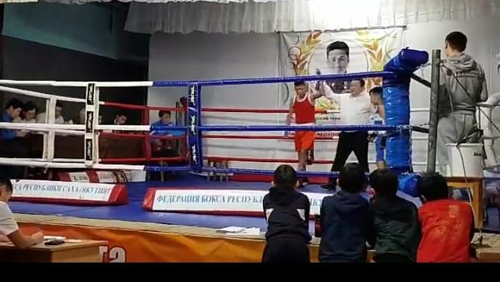 Республиканский турнир по боксу.